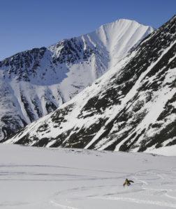 Lappland lössnö i maj